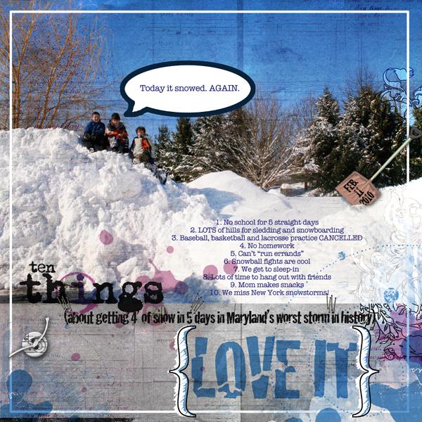 Snowmageddon 2010_sm
